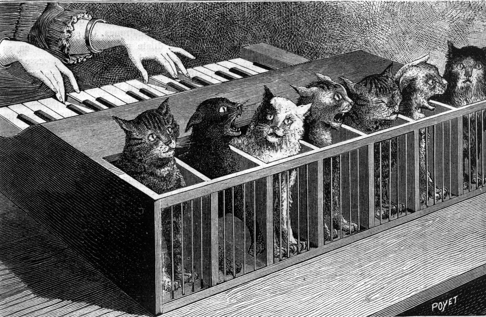 19th-century engraving of the cat piano, a piano made...well...of cats.