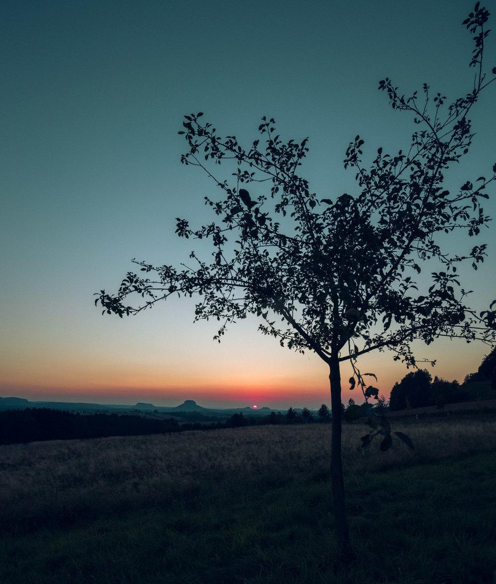 Sächsische_Schweiz_Sonnenuntergang2.jpg