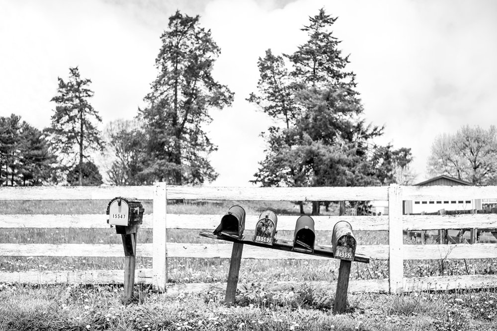 Mailboxes in front of farm, Elkton, Virginia VA, USA by Leica Photographer Manuel Guerzoni in San Francisco