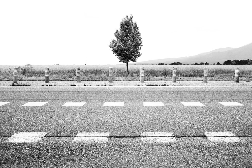 Route Nationale 83, Alsace, France by Leica Photographer Manuel Guerzoni in San Francisco