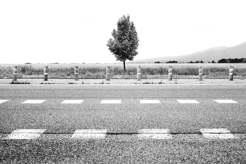 Route Nationale 83, Alsace, France by Leica Photographer Manuel Guerzoni