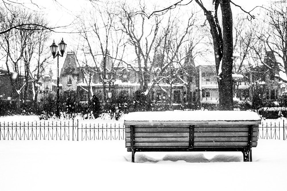 Bench and Snow, Montreal, Quebec, Canada by Leica Photographer Manuel Guerzoni in San Francisco
