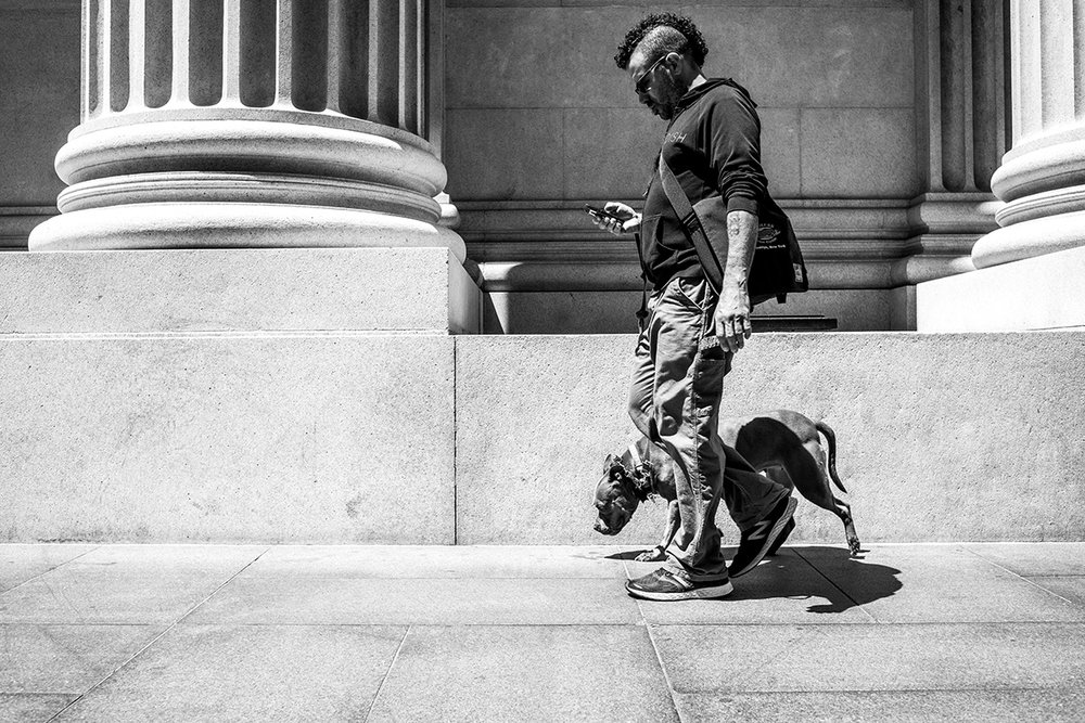 Man on phone with dog, Downtown, San Francisco, CA, California, United States by Leica Photographer Manuel Guerzoni