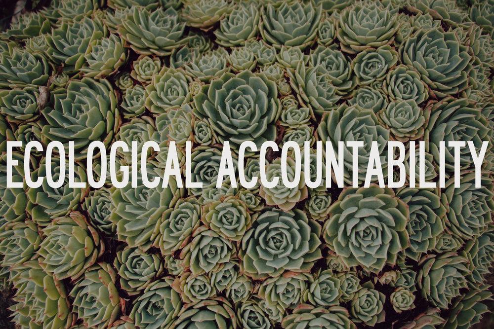 EcologicalAccountability.jpg