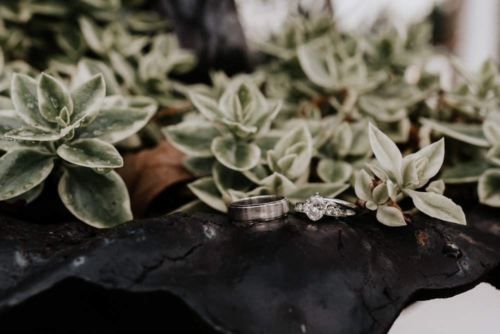 Melissa-Tom-Wedding-4271.jpg