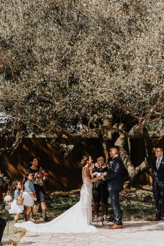 Ashley-Alex-Wedding-5470.jpg