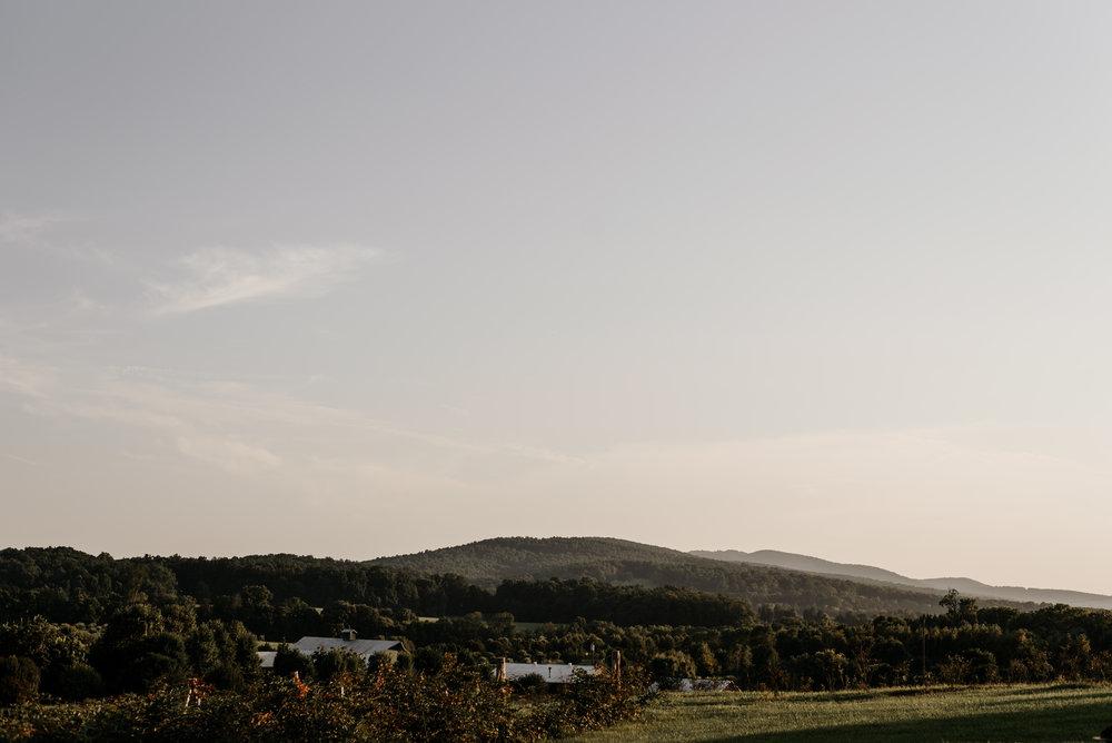 Lauren-Trell-Wedding-Market-at-Grelen-Virginia-Photography-by-V-6545.jpg