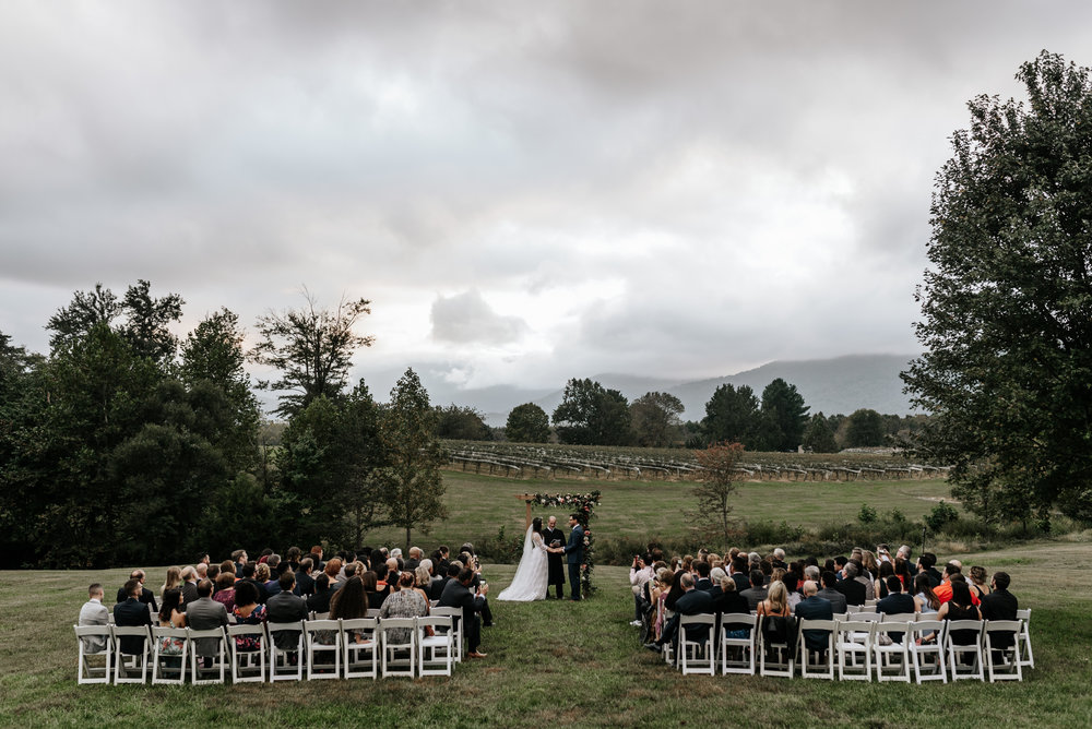 Veritas-Vineyards-and-Winery-Wedding-Photography-Afton-Virginia-Yasmin-Seth-Photography-by-V-9647.jpg