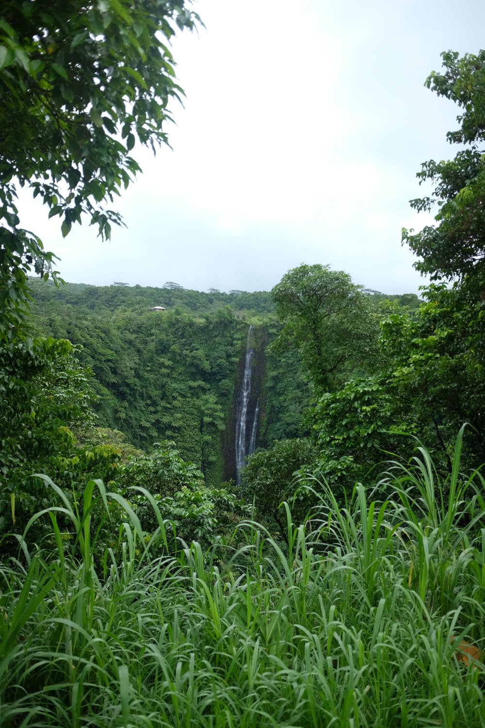 Papapapaitai Falls on the Cross Island Road, Upolu