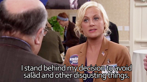Leslie Knope is my spirit animal.