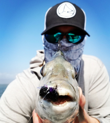 Sheepshead Sightcast Fly Fishing .jpg