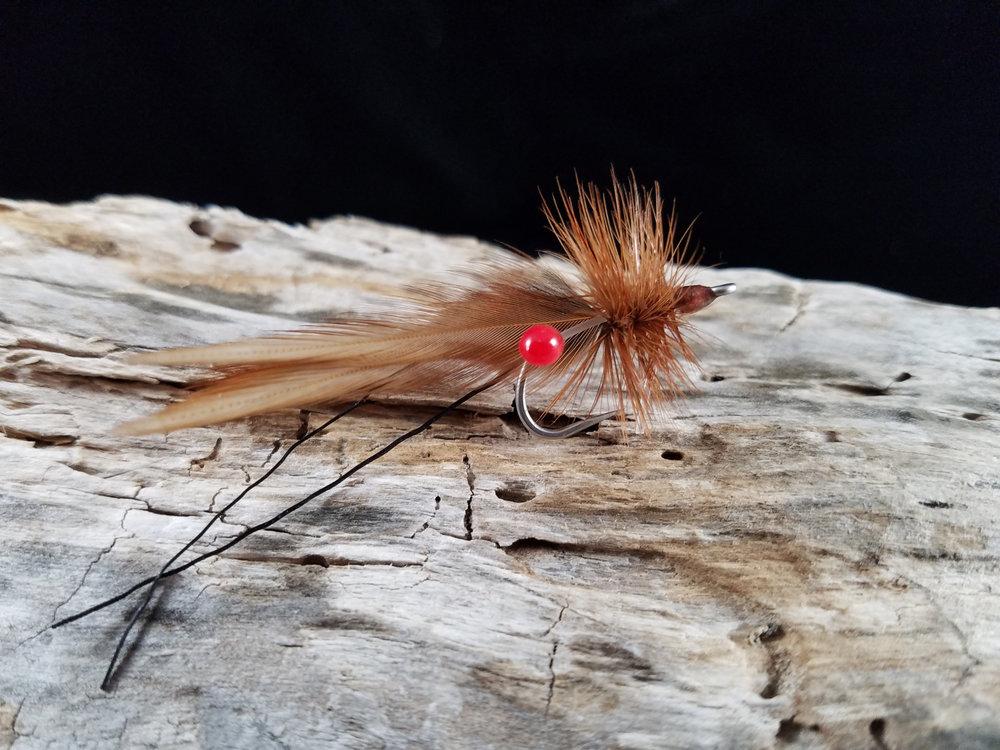 Brown Noser Side 1500px.jpg