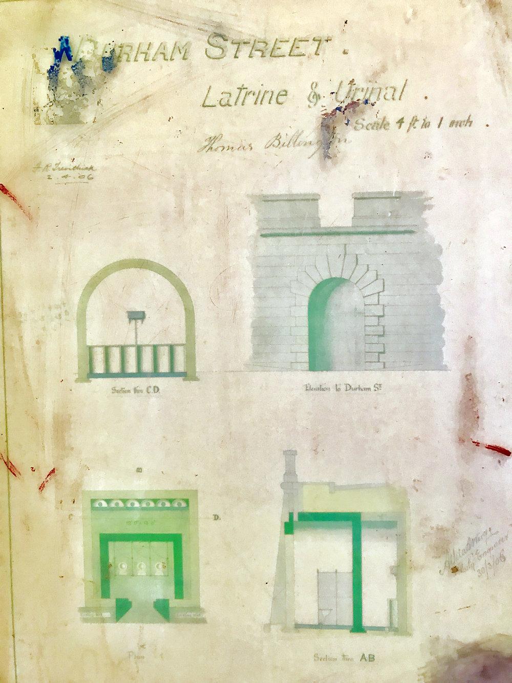 Blustone toilets 5 mural.jpeg
