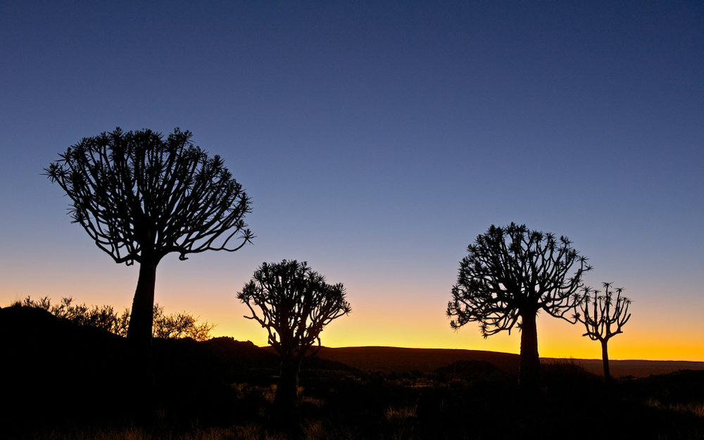Africa_Photographic_Namibia__90.jpg