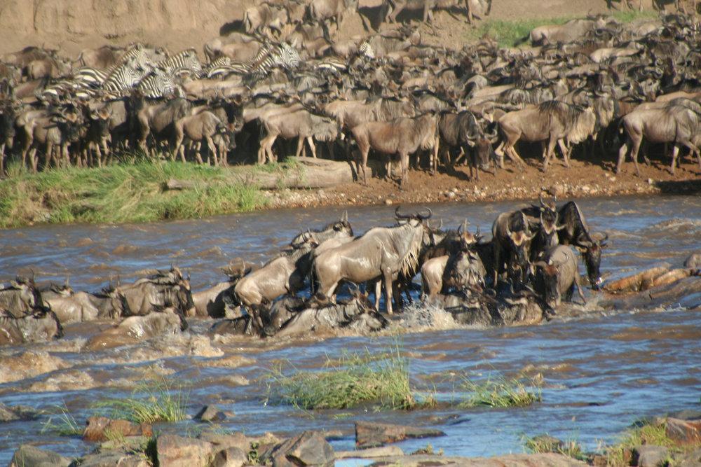 Africa_Photographic_Serengeti__2.jpg
