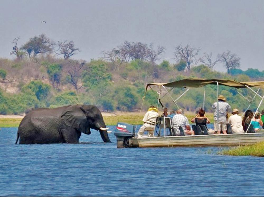 16 Day PREMIUM Safari ***** - South Africa,Zimbabwe,Botswana/Namibia border