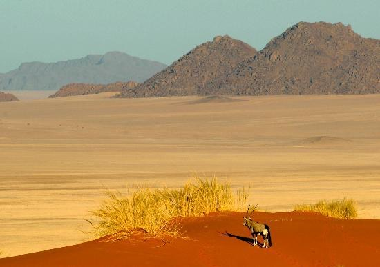 Africa_Photo_Safari_Namibia_Sosusvlei1.jpg