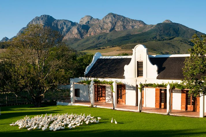 africa_photo_safari_South_Afrifca_Wine_Franschoek