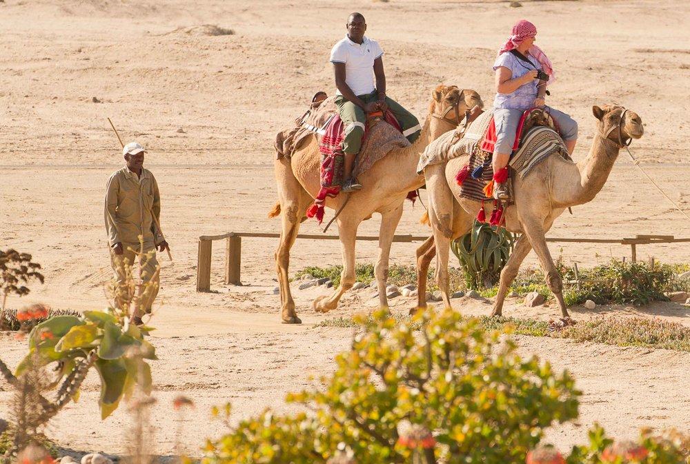 africa_photo_safari_Namibia_Swakopmund