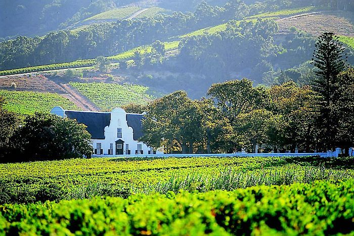 Cape Winelands Tour: Stellenbosch - Framed by sun-splashed vineyards and craggy mountain peaks, the picturesque valleys of the Cape Wine lands are famous for their grand old estates, pretty little towns, award-winning restaurants and - of course - for their wine!