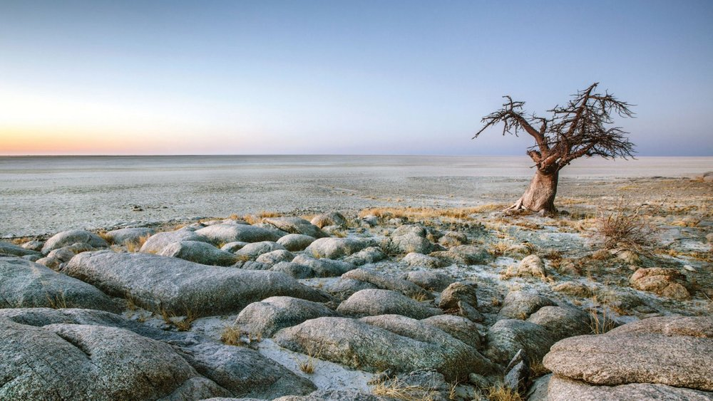 Day 8 & 9: MAKGADIKGADI National Park - Makgadikgadi Pans Game Reserve is the scene of large migrations of zebra and wildebeest from the Boteti River across to Nwetwe Pan...