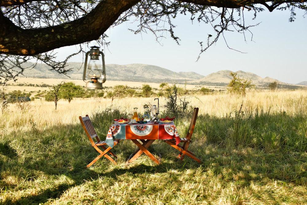 africa photo safari-tanzania1178jpg.jpg