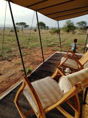 africa photo safari-tanzania101.jpg