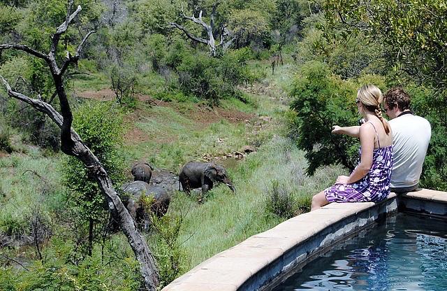 africa photo safari Madikwe17.jpg
