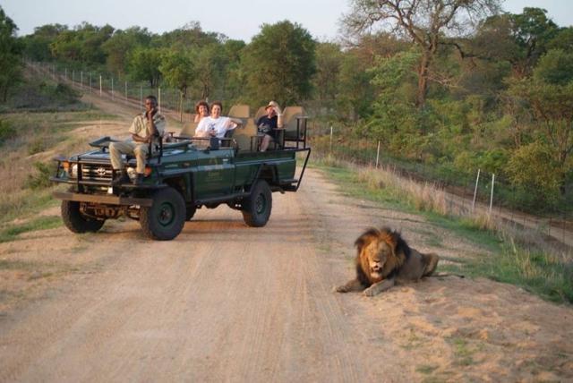 africa photo safari Madikwe14.jpg