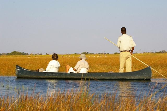 africa photo safari botswana camp21.jpg