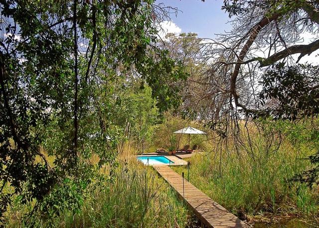 africa photo safari botswana camp10.jpg
