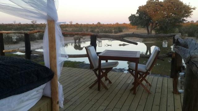 africa photo safari Zimbabwe-0117.jpg