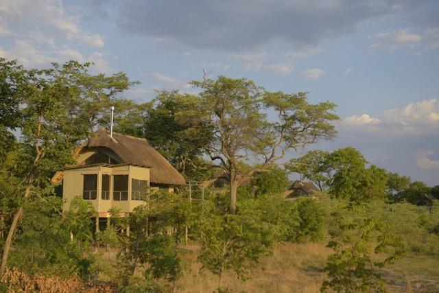 africa photo safari Zimbabwe-014.jpg