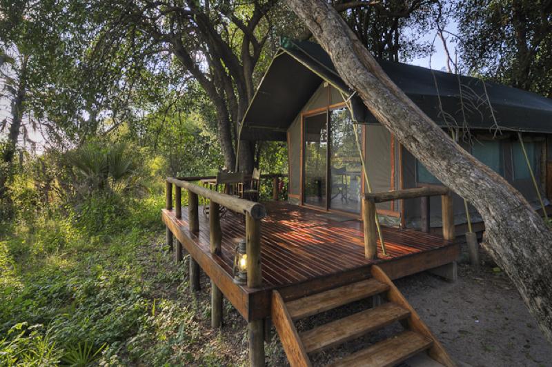 africa photo safari  botswana-1118.jpg
