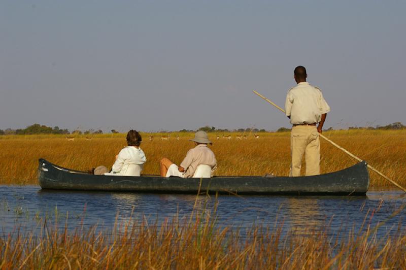 africa photo safari  botswana-1112.jpg