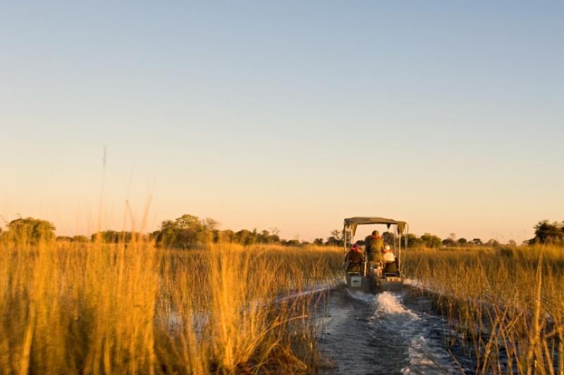 africa photo safari  botswana-115.jpg