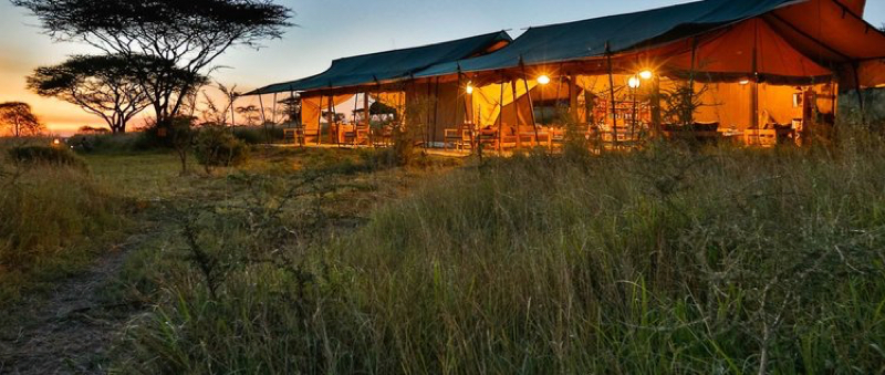 africa photo safari  tanzania-091.jpg