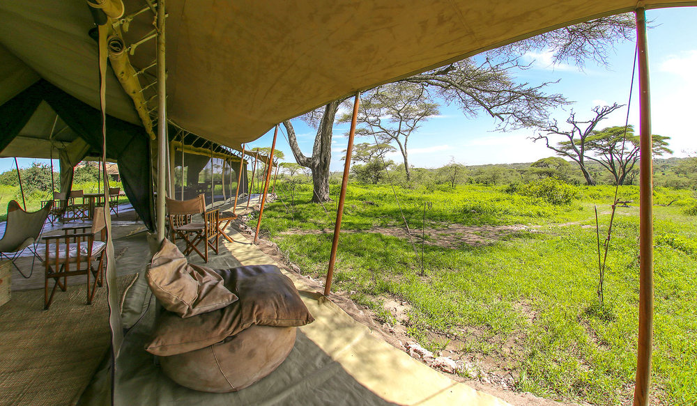 africa photo safari tanzania-094.jpg