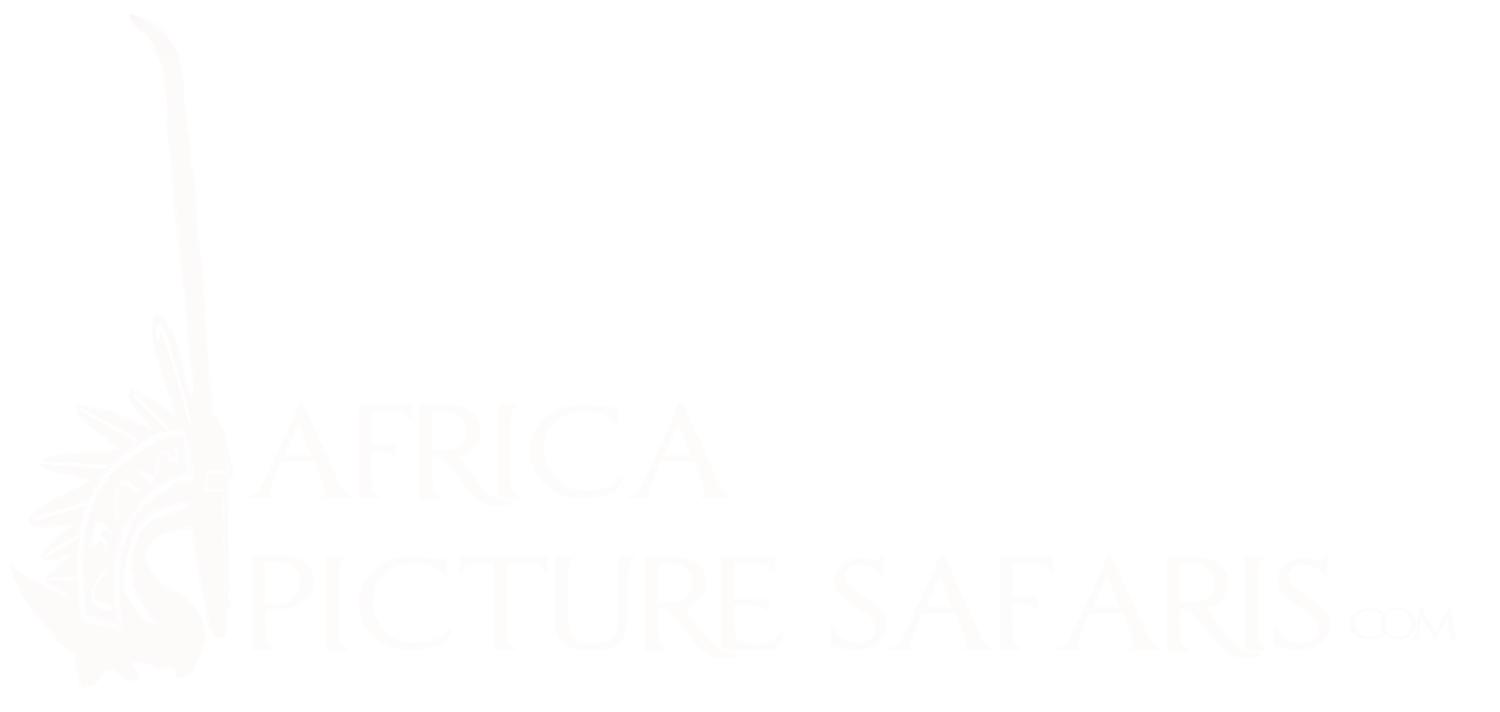 Africa Picture Safaris