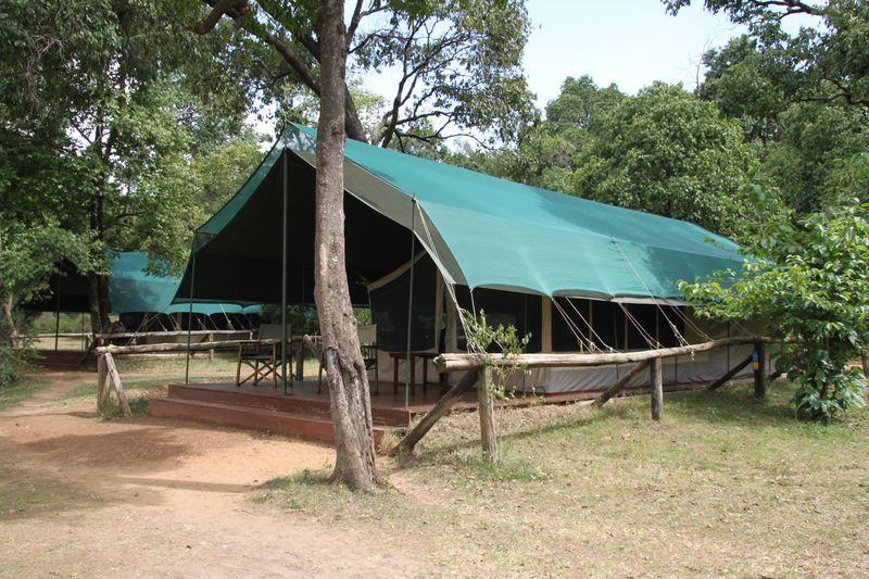 africa safari masai mara 34.jpg