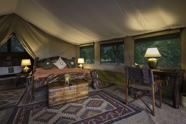 africa safari masai mara 31.jpg