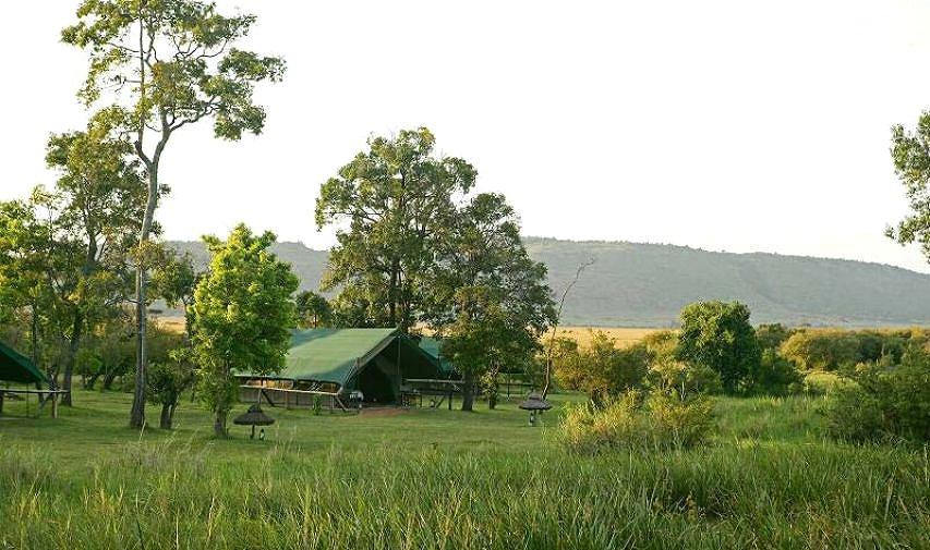 africa safari masai mara 29.jpg