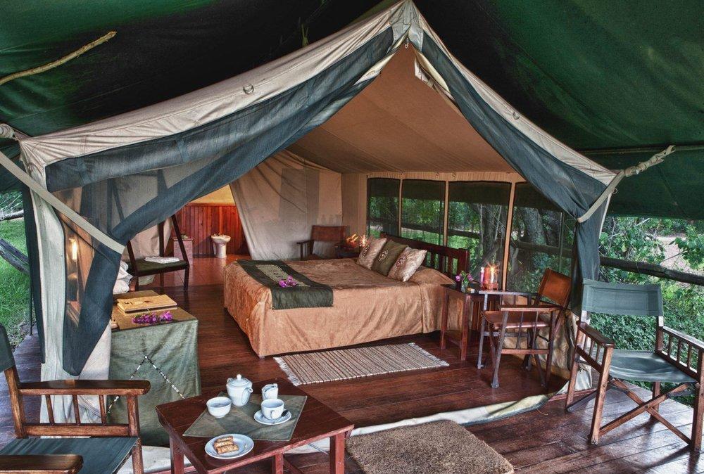 africa safari masai mara 23.jpg