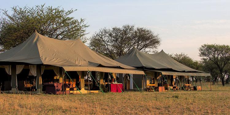 africa safari serengeti.jpg