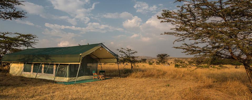 africa safari central serengeti 30.jpg