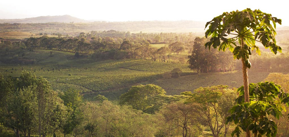 africa safari  nogorogoro accomm 22.jpg