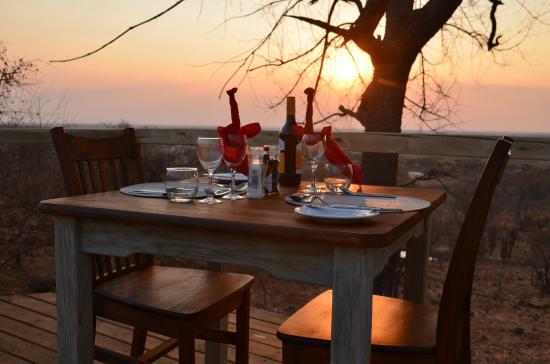 africa safari chobe 7.jpg