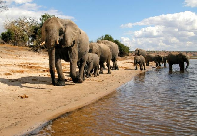 10 DAY VIctoria falls,Chobe & moremi - 9 NIGHT/ 10 DAYS• Victoria Falls • Chobe Game Reserve • Khwai & Moremi Game Reserves