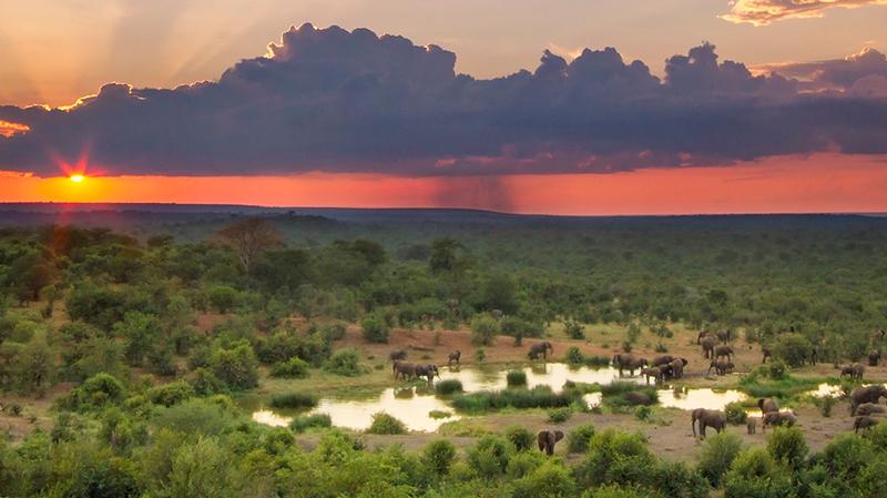 africa safari Vic falls accommodation121.jpg