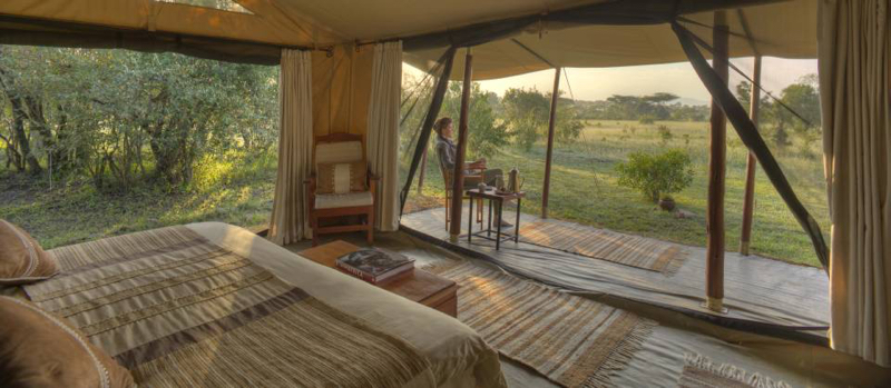 safari masai mara132.jpg